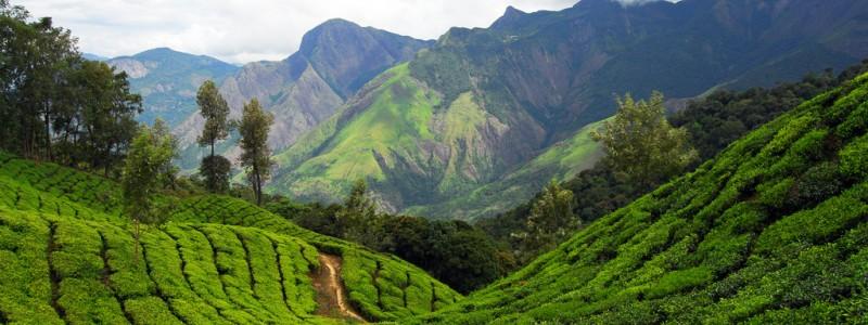 Trekking et escalade en Inde
