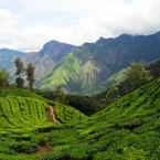 Trekking und Bergsteigen in Indien