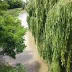 Delta del Fiume Po, per un viaggio indimenticabile