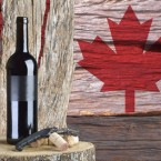 Canada Ice Wine Tours