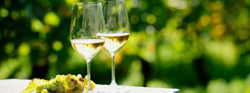 German Wines: Winery Tour to German Riesling