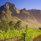 Винные туры в Южной Африке, стране, знаменитой своим виноделием