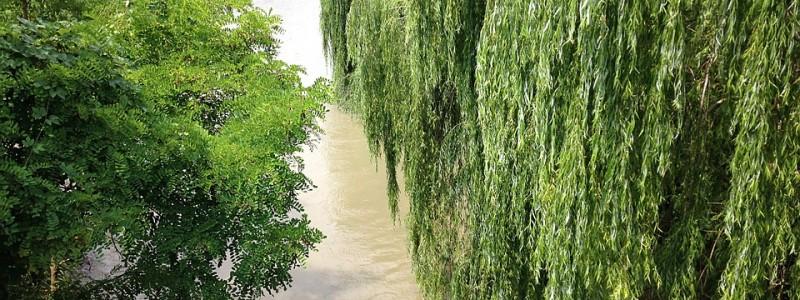 Река на севере Италии: Дельта реки По, незабываемое путешествие