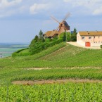 Laderas de Champagne: degusta la ruta histórica del champán