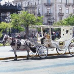 Guadalajara: entre tequilas y mariachis